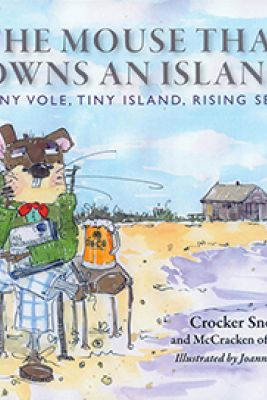 The Mouse That Owns an Island Picture