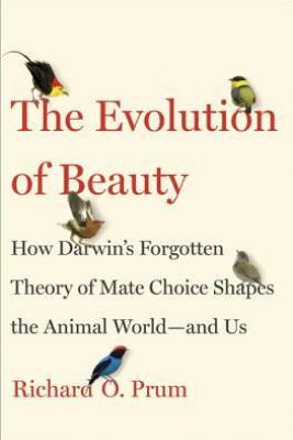 The Evolution of Beauty: How Darwin's Forgotten Theory of Mate Choice Shapes the Animal World - and Us Picture